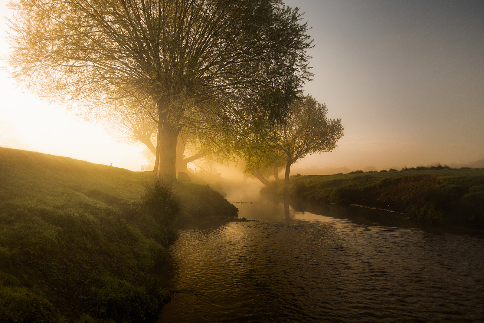 River of dreams by Simon Wilkes